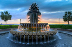 Strand för springbrunnen för charlestonSC-ananas parkerar Royaltyfri Foto