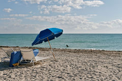 strand florida södra miami Arkivbild