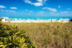 strand florida södra miami Arkivfoton