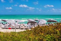 strand florida södra miami Royaltyfria Bilder