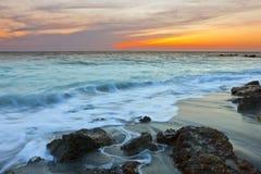 strand florida venice Arkivbilder