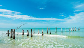 strand Fort Myers Royaltyfri Fotografi