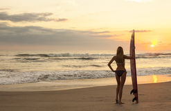Strand för solnedgång för för kvinnabikinisurfare & surfingbräda Arkivfoto