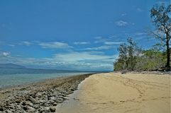 Strand in Fraser Island, Australië stock fotografie