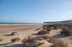 Strand Fuerteventura Stock Afbeelding