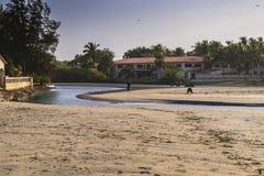Strand in Gambia Royalty-vrije Stock Fotografie