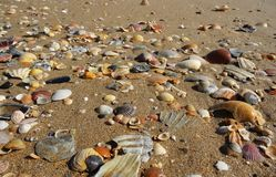 Strand gefüllt mit vielen Arten Oberteile Stockfotografie