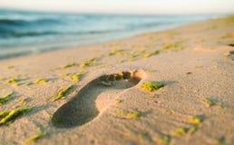 Strand, golf en voetafdrukken stock foto's