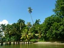 Strand in Guatemala Lizenzfreies Stockbild