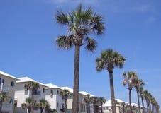 Strand-Häuser und Palmen Stockfotografie