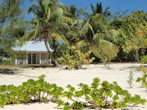Strand-Haus-großartiger Kaiman Stockbilder