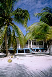 Strand-Haus und Palmen Stockfotos