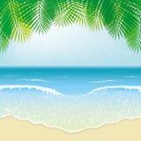 Strand, havsvågor och palmblad Arkivbild