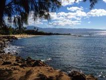 Strand in Hawaï Stock Foto