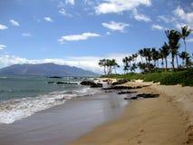 strand hawaii royaltyfri fotografi