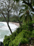strand hawaii maui Arkivbilder