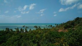 Strand, hemel en bos stock foto's