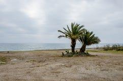 Strand in het Middellandse-Zeegebied stock fotografie
