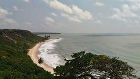 Strand, himmel och skog royaltyfri bild