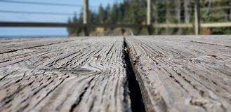 Strand-Holz stockfoto