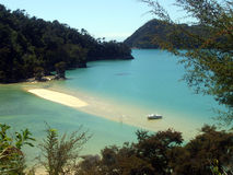 Strand i Abel Tasman National Park, Nya Zeeland Arkivbild