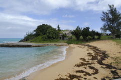 Strand i Bermuda Arkivfoto