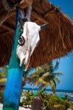 Strand i Costa Maya Arkivfoto
