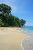 Strand i Costa Rica med den frodiga tropiska skogen Royaltyfri Bild