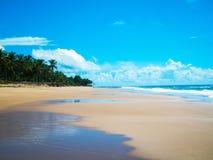 Strand i den nordostliga delen av Brasilien Royaltyfri Fotografi