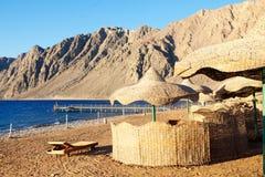 Strand i Egypten royaltyfria bilder