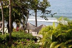 Strand i Hawaii Maui Arkivbild