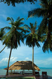 Strand i Koh Phangan Thailand Royaltyfria Foton