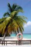 Strand i Maldiverna, palmträd och en buyo Royaltyfria Foton