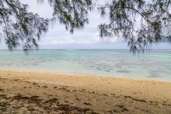 Strand i paradis Royaltyfri Bild