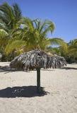 Strand i Rancho Luna karibiskt hav Atlantic Ocean övre sikt Fotografering för Bildbyråer
