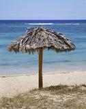 Strand i Rancho Luna karibiskt hav Atlantic Ocean övre sikt Royaltyfri Foto