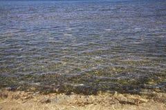 Strand i Rancho Luna karibiskt hav Atlantic Ocean övre sikt Royaltyfri Fotografi