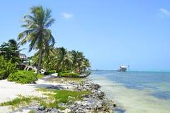 Strand i San Pedro, Belize Arkivfoton