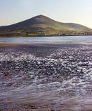 Strand in Ierland Royalty-vrije Stock Foto's