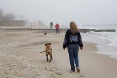Strand im Nebel Stockfotografie