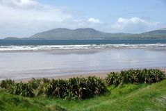 Strand in Irland Stockbild