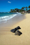 Strand in Kauai, Hawaï Stock Afbeeldingen