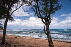 Strand Kauais, Hawaii Lizenzfreie Stockbilder