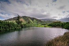 Strand Kauais, Hawaii Lizenzfreies Stockfoto