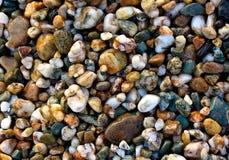 Strand-Kiesel Stockbilder