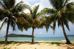strand langkawi Royaltyfria Bilder