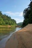 Strand langs de rivier in Taman Negara, Maleisië Stock Foto