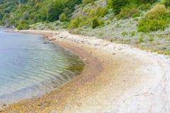 Strand in Lapataia-baai, Tierra del Fuego National Park stock fotografie
