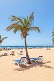 Strand Las Teresitas auf Teneriffa Lizenzfreie Stockfotos