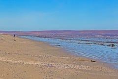 Strand at low tide met de mens die in afstand lopen royalty-vrije stock foto's